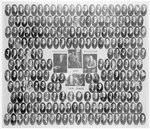 University of Michigan Law School Class of 1912
