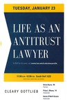 Life as an Antitrust Lawyer