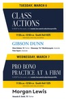 Class Actions / Pro Bono Practice at a Firm