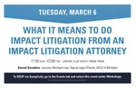 What It Means to Do Impact Litigation from an Impact Litigation Attorney